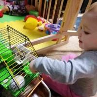 Создание игровой комнаты для ребенка от года до трех лет