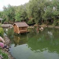Пикник на озере: не забываем о безопасности!